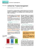 Artikel Achtsames Prozessmanagement